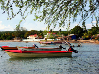An Insider's Guide to Jamaica's South Coast